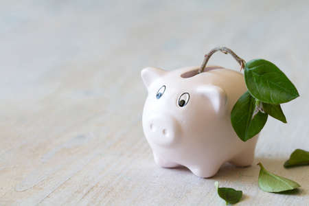 Pig piggy bank with withered plant. Standard-Bild