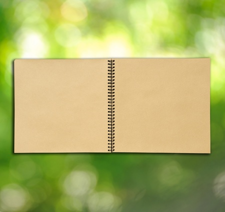 open vintage sketch book on light green background  photo