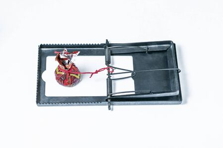 Candy as bait in a mousetrap. White background
