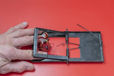 The hand of an adult man was caught in a mousetrap with a candy