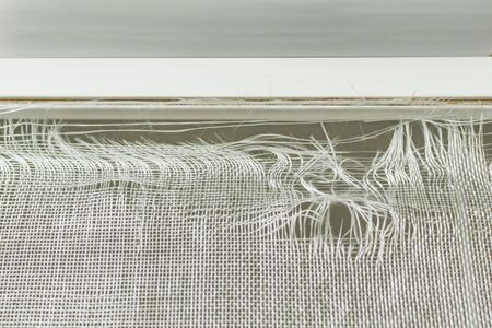 Old scratched dirty mosquito net, with big ragged holes Standard-Bild - 137884850