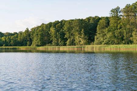 Landscape image of a large forest lake