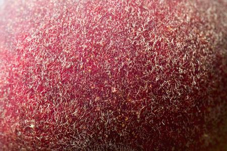 Ripe peach skin on the tree macro Stock Photo