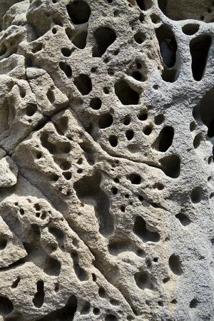 honeycombed: Limestone erosion Stock Photo