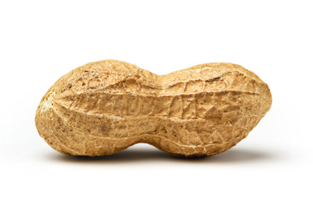 peanut: Peanut Closeup on white background