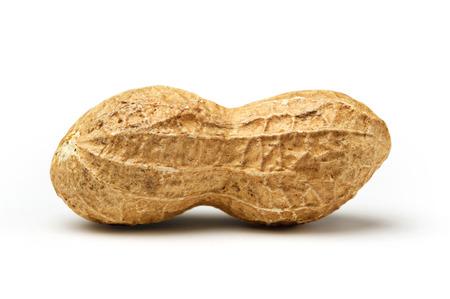 cacahuate: Primer del cacahuete en el fondo blanco