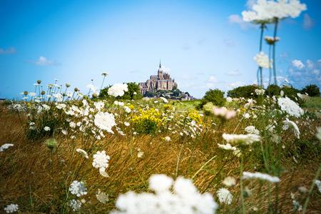 mont saint michel: Mont Saint Michel between flowers