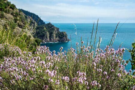 scenic sea landscape in italian Riviera. Liguria, Italy