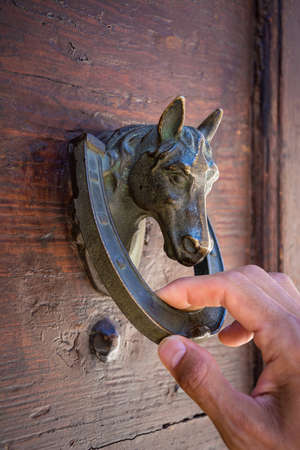 man's hand knocking on a wooden door with an old horse-shaped knocker Standard-Bild