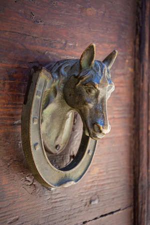 close up of an old horse-shaped knocker on a traditional wooden door
