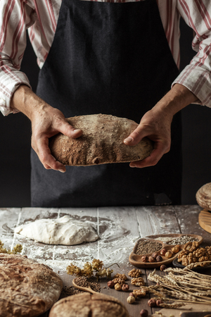 Hands of unidentified baker man in cooking wear, holding homemade sourdough bread, food concept