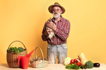 Vorderansicht eines reifen Gärtners mit grauem Bart, der mit einer Haushenne hinter der Theke mit frischem üppigem Gemüse und Eiern steht und direkt in die Kamera blickt. Studioaufnahme.