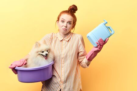 Should I wash the dog Indignant ginger pet owner doesnt know how to take care of pet. isolated yellow background