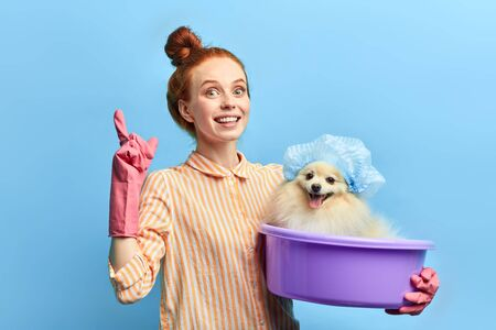 cute clever pet owner giving advice how to take care of dogs, isolated blue background, studio shot. instruction, tips of washing a pet. lifestyle