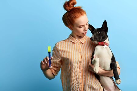 pet owner treating her dog at home. close up portrait, isolated blue background, studio shot. wellness and wellbeing of pets.