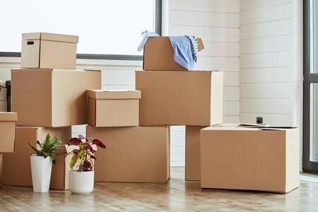 Doce cajas de cartón con artículos domésticos en la sala de estar iluminada el día de la mudanza. Dos flores en macetas en el lado izquierdo. Foto de archivo