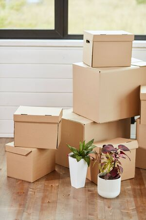 Six carton boxes with household stuff on floor in light living room on moving day. Near two flowers in pots. 版權商用圖片