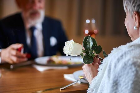 Caucasian gray-haired man in tuxedo offers to get married. Lovely face of male. Woman keep white rose in hands