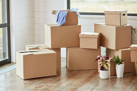 Twelve carton boxes with household stuff in light living room on moving day. Two flowers in pots on right side