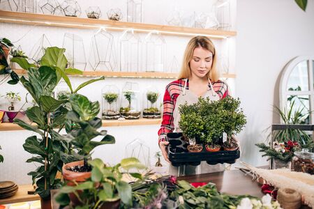 young and beautiful caucasian lover of plants and flowers look after plants, blond lady surrounded by botany, green plants in pots
