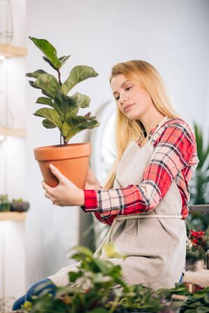 young caucasian woman florist at work, enjoy and love work with flowers, decorating and composing bouquet. botany, flowers, plants, nature concept Zdjęcie Seryjne