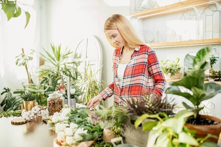 young caucasian lady with blonde hair enjoy working as florist, attractive owner of shop, young gardener around plants take care of flowers Zdjęcie Seryjne