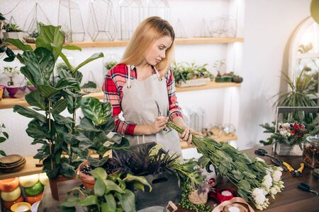 young beautiful woman make wonderful bouquet of white flowers, beautiful lady composing, decorating all botany in her own florist shop Zdjęcie Seryjne