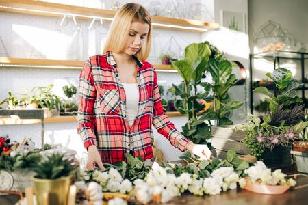 Small business owner and beautiful florist woman preparing a white flower bouquet, enjoy working with plants and flowers. Botany, plants concept Zdjęcie Seryjne