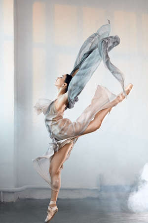 Perfect harmony fascinating our minds and eyes, ballet dancer in a jump. Ballerina is wearing in blue grey dress and pointe shoes. Smoke effect