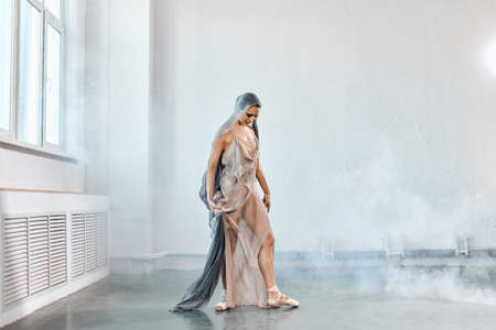 Full size portrait of talanted ballet student woman wears grey fluttering scenic dress giving a performance on a final exam in light studio on white smoky background. Reklamní fotografie