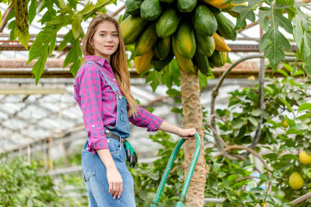 good looking girl is takes care of exoic trees, close up photo. copy space. job, profession