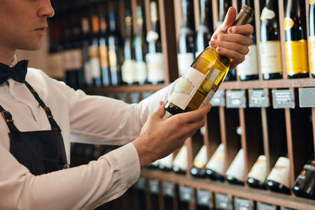 Handsome and young elegant brown haired cavist or wine seller with a bottle of wine on the background of dark wine house with shelves of bottles with alcohol. Stock Photo