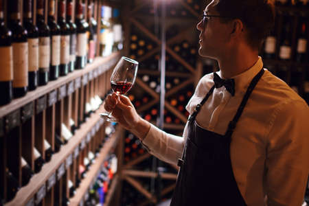 Experienced sommelier possessing not only wine etiquette but also wine tasting skills enjoying taste and flavor of noble beverage. Banque d'images