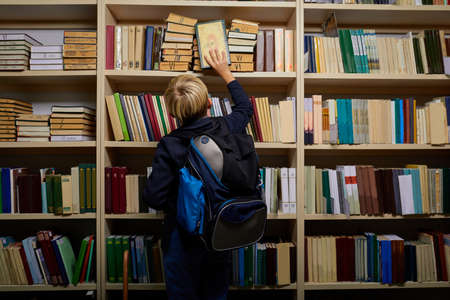 rear view on pupil boy in library, boy taking a book from multi colored bookshelf in library. Education, Knowledge. Archivio Fotografico