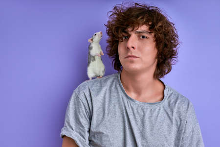 white rat sniffs and looks at curly hair of man, portrait of guy with decorative rodent isolated on purple background