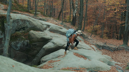 Beautiful wandering girl in a hat with a camera on her neck, travels through autumn forest past the rocks Фото со стока
