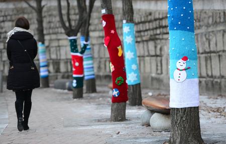Lets warm hug a tree.