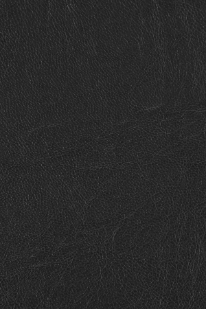 Black leather texture with black and white filter Stock Photo - 24832600