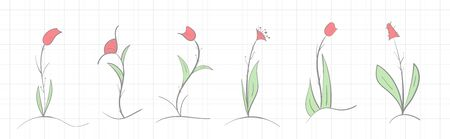 Set of handmade wildflowers on a notebook sheet on a light background Illustration