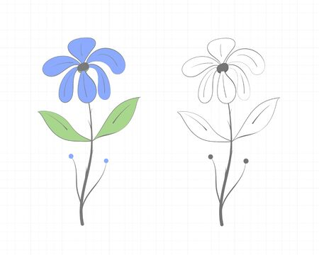 Drawing of a flower with leaves in two versions, color and black and white, on a light background