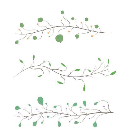 Set of branches with leaves and berries of different colors and shapes on a white background.