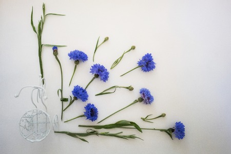 writing desk: Blue cornflowers and white bike. Overhead view. Flat lay, top view. Place for your text. Stock Photo