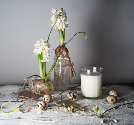 Still life with milk, hyacinths and freesias in glass vases. Stock Photo