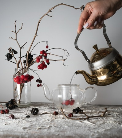 viburnum branches with berries and snow in a transparent vase, female hand pouring water into the kettle Zdjęcie Seryjne