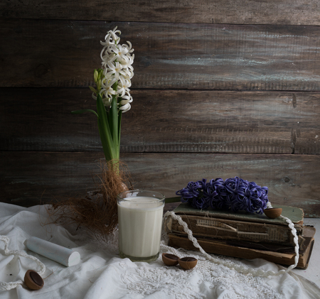 Still life with hyacinth, old books and glass of milk on a background of a rough wooden wall