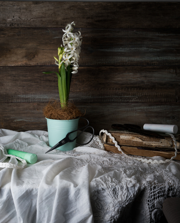 Still life with hyacinth in a pot, scissors, crayons and lace on a background of rough wooden walls. vintage