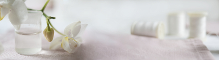 Header, banner for site design. Needlework, handmade. Coil thread and orchid. Horizontal format, space for text Stockfoto