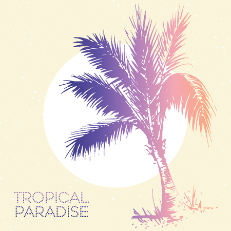 palm tree: palm tree illustration. Travel sketch drawing in vintage colors. Tropical paradise vacation design for hotel or travel company design. Illustration