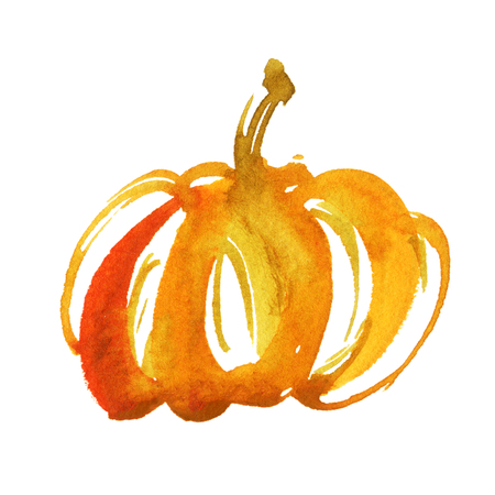 Watercolor illustration of pumpkin. Autumn, Thanksgiving or Halloween background.