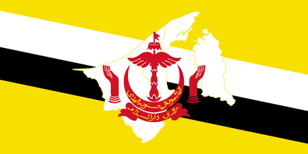 Map and flag of Brunei. Vector illustration. World map